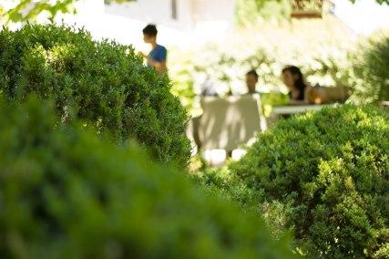 Au jardin 2 Stephanie Prunaret